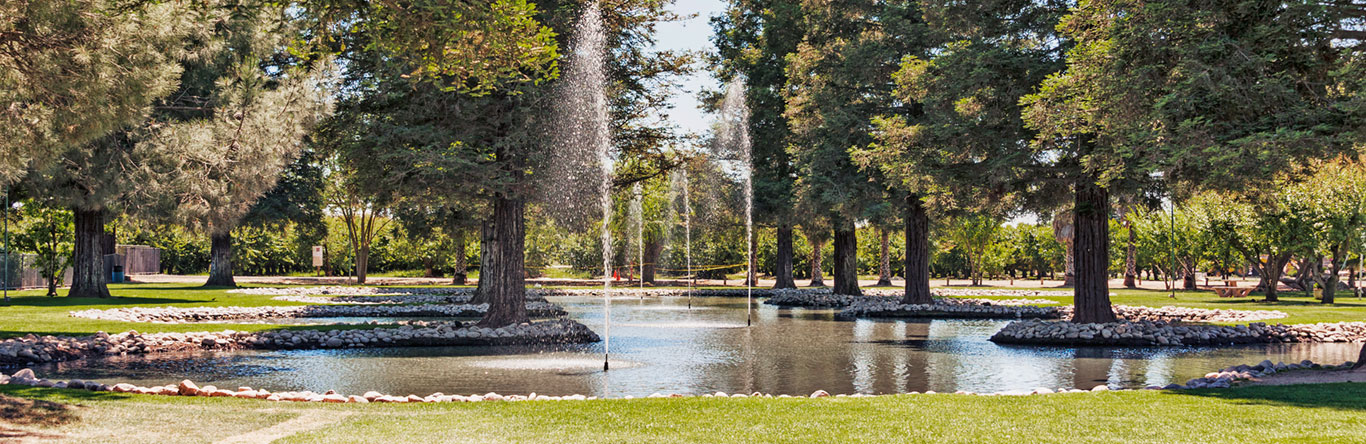 pond with fountains in park